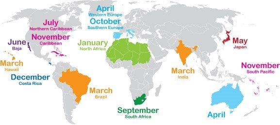 Shoulder Season Chart