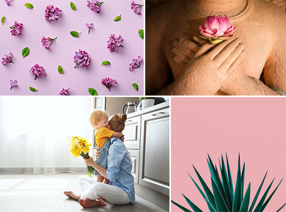 Stock photos of flowers that are in demand