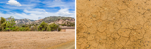 stock photography showing drought in Australia