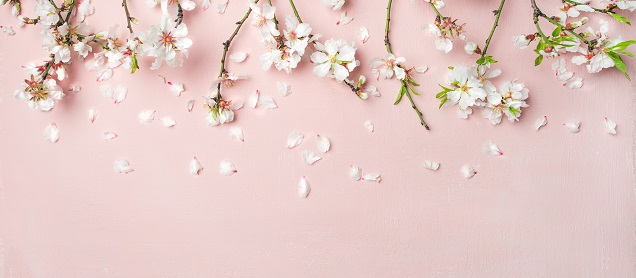 Inspiration for taking photos with a spring theme...