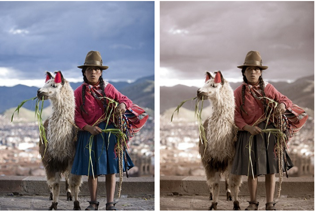 Tips on using Lightroom presets to make your photos pop...