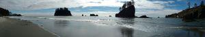 17rialto beach by tamatha hazen