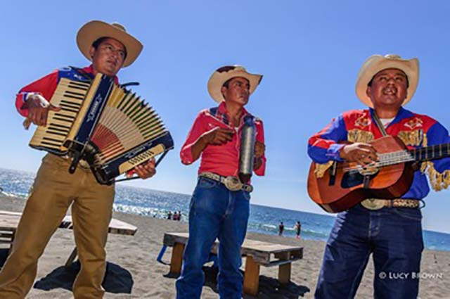 mariachi band by lucy brown